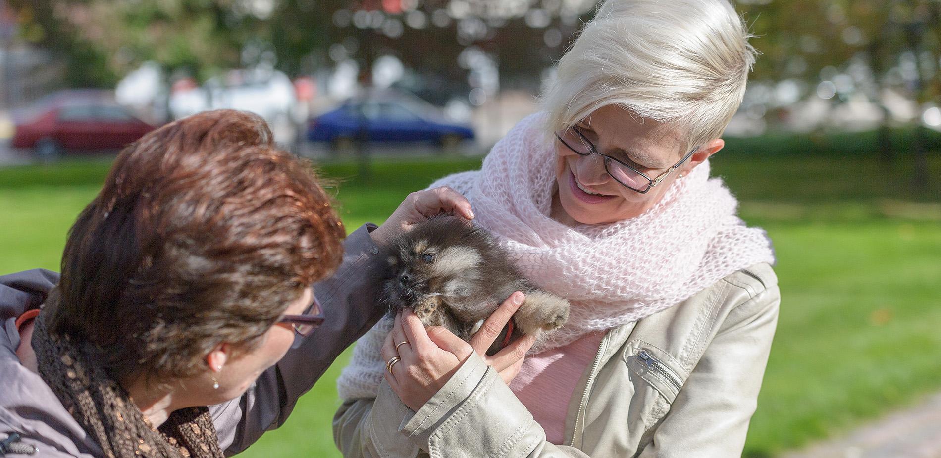 Naiset hellivät koiranpentua puistossa