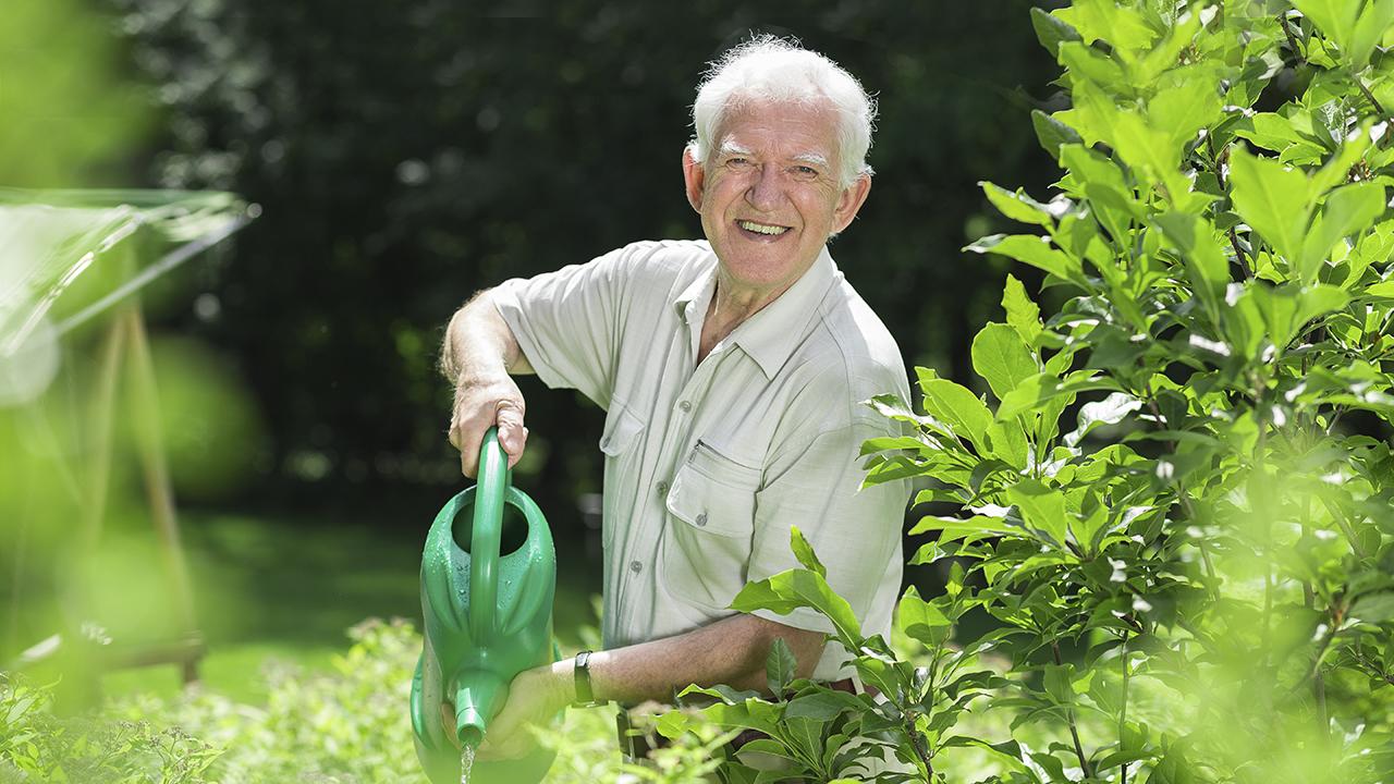 Vanhempi mies kastelee kasveja puutarhassa.