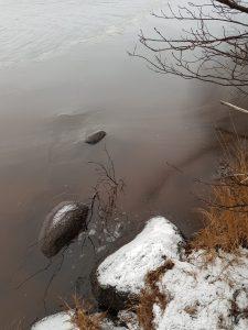 Jäätyvä vesi ja kiviä rannassa