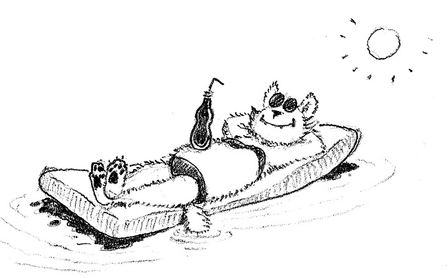 Toivo kesätunnelmissa uimapatjalla