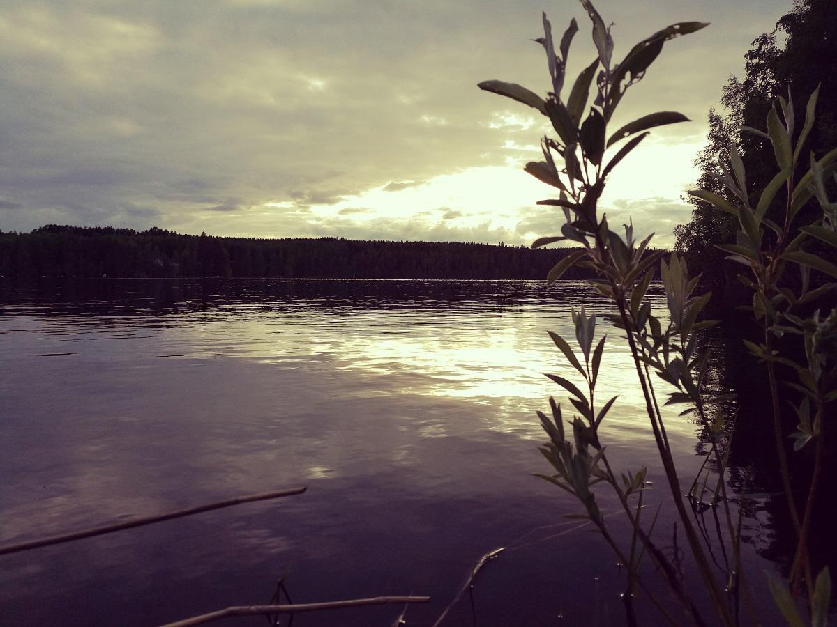 auringonlasku järvi saari ranta