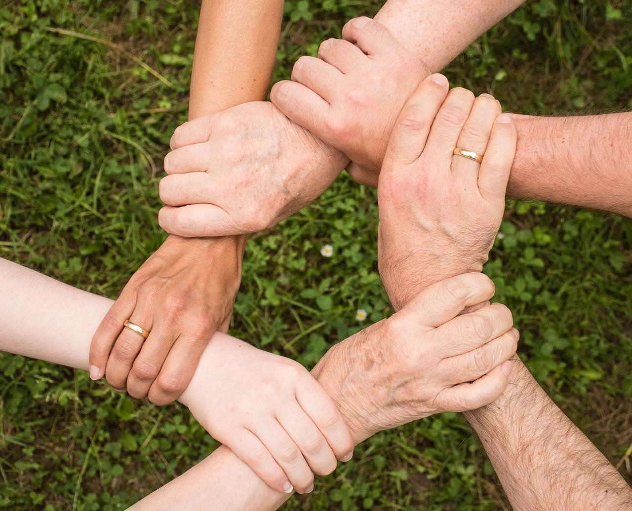 monia käsiä pitämässä kiinni toisistaan ruoho taustalla
