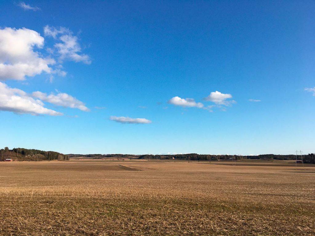 peltomaisema, sininen taivas