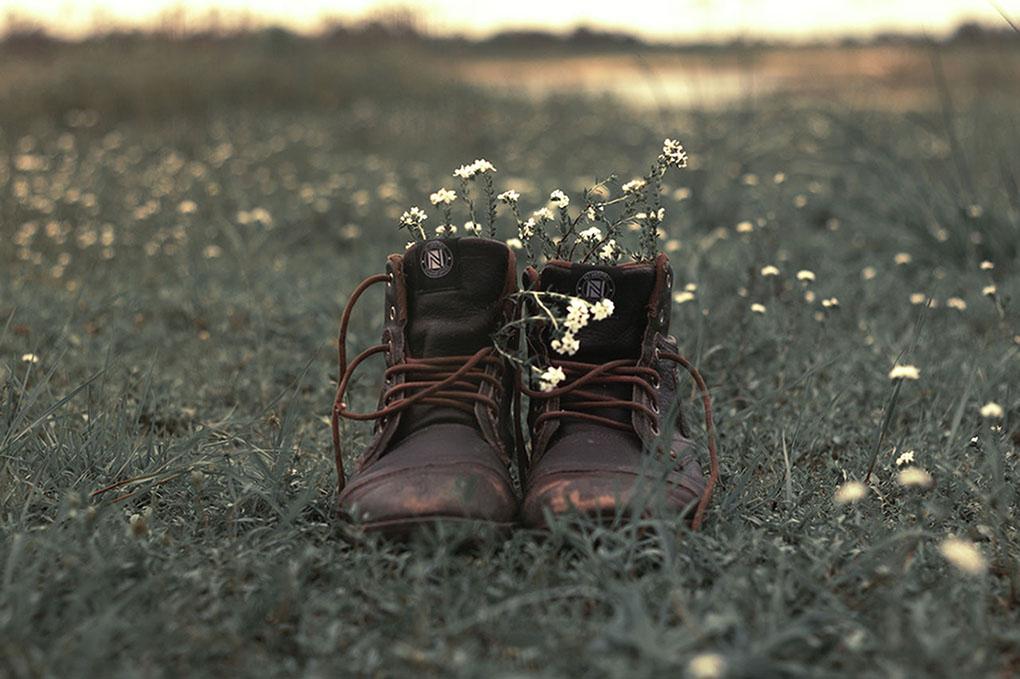 Kenkäpari täynnä kukkia