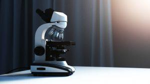 Mikroskooppi hämyisessä valossa